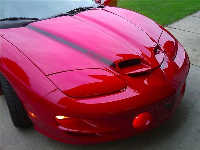 trans am ram air hood in Hoods